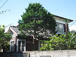 西荻住宅06.JPG