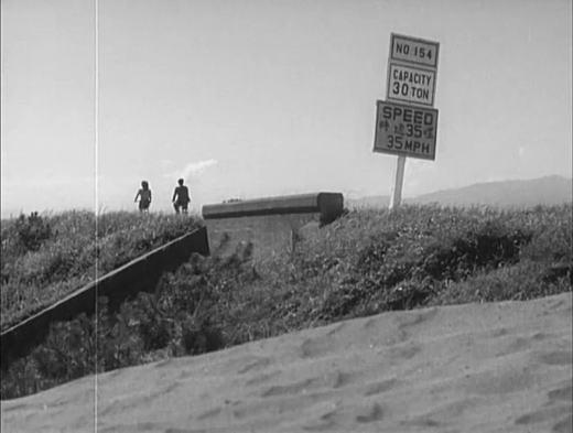 遊歩道路晩春1949.jpg