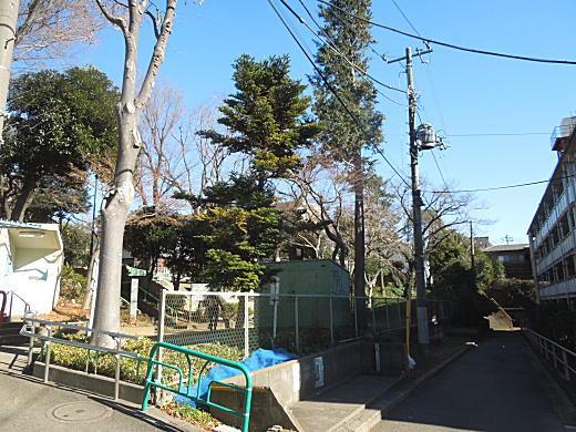 釜寺東遺跡段丘斜面.JPG