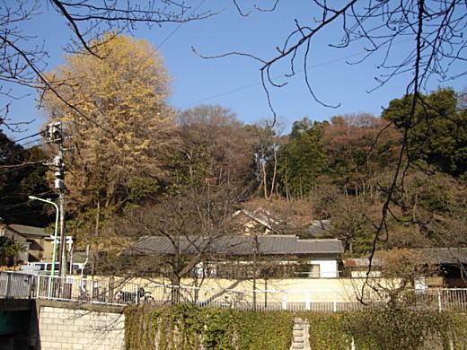 関口芭蕉庵8.JPG