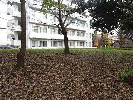 陸軍科学研究所跡4.JPG