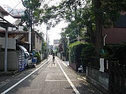 雑司ヶ谷道.JPG