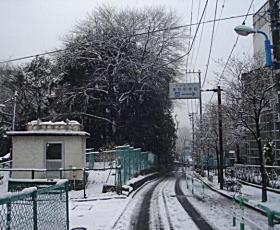 雪の相馬坂.jpg